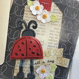 *****Lady Bug Card Kit