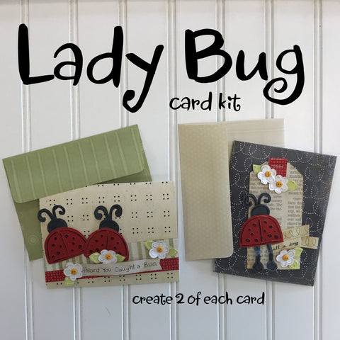 *******Lady Bug Card Kit