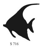 S716 - Angel Fish