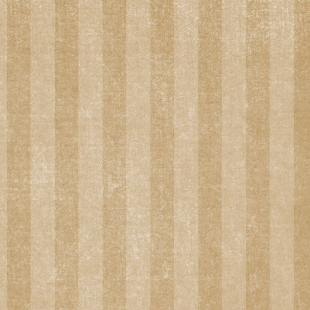 *TTCS8 - Toadstool Tan Chalky Stripes 8 1/2 x 11 - One Sheet