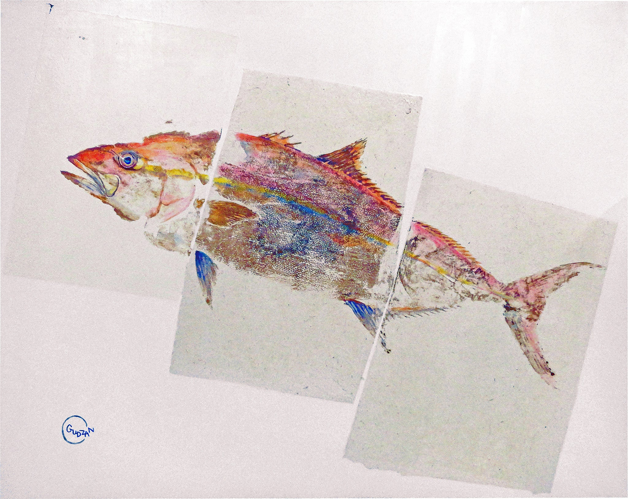 New Fish Art - Amberjack