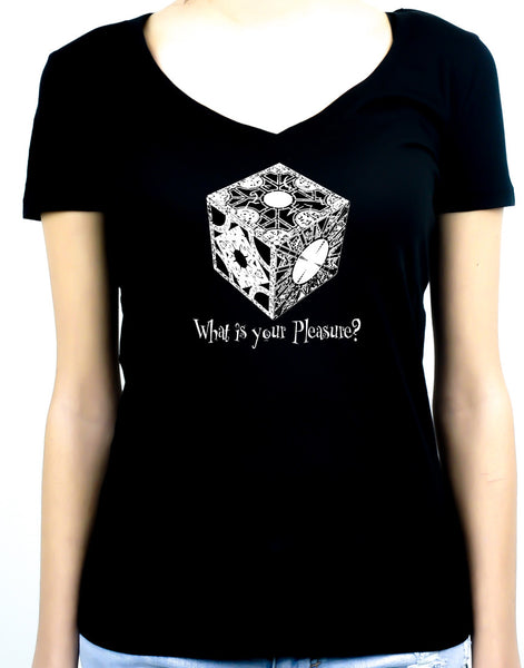 Puzzle Box What Is Your Pleasure? Women's V-Neck Shirt / Top