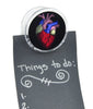 Anatomical Human Heart Magnet Clip Medical Oddities Novelty Gift Fridge Mag