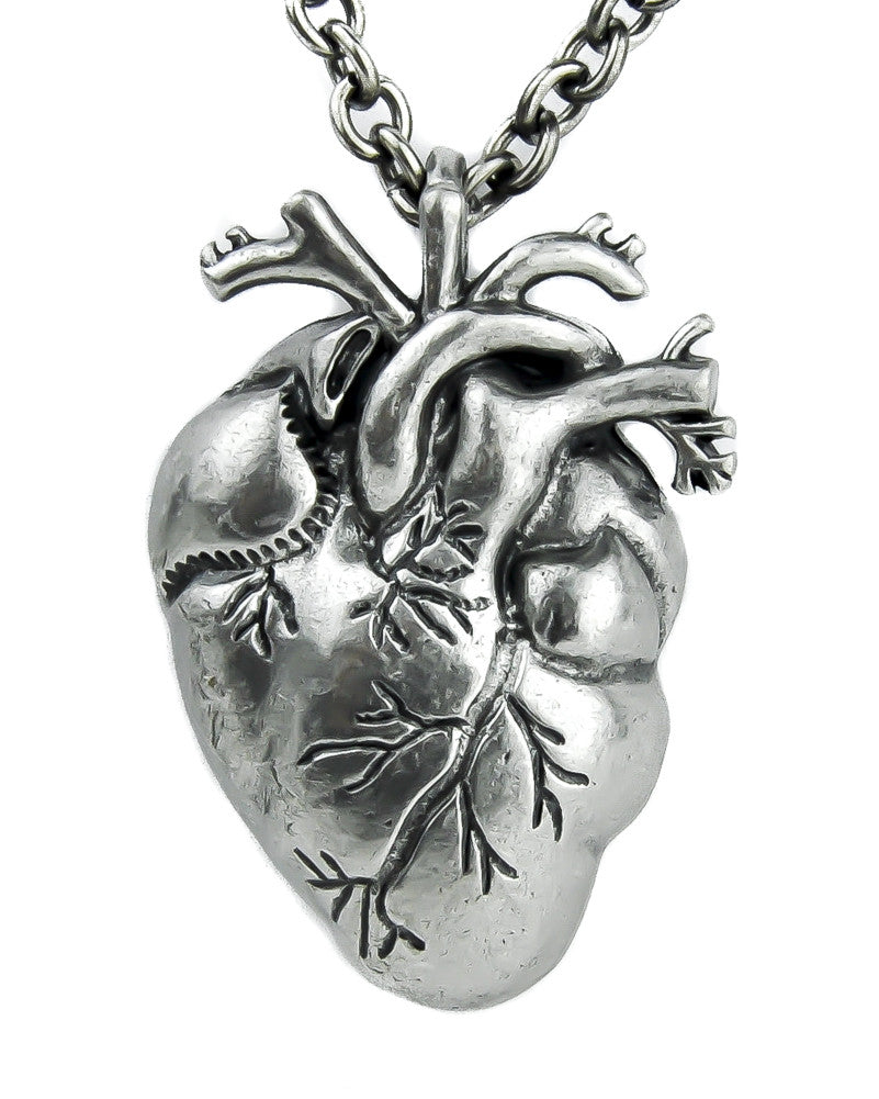 Anatomical Heart Pendant Realistic Oddities Pendant