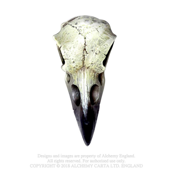Alchemy Gothic Reliquary Raven Skull Figurine Figure Crow