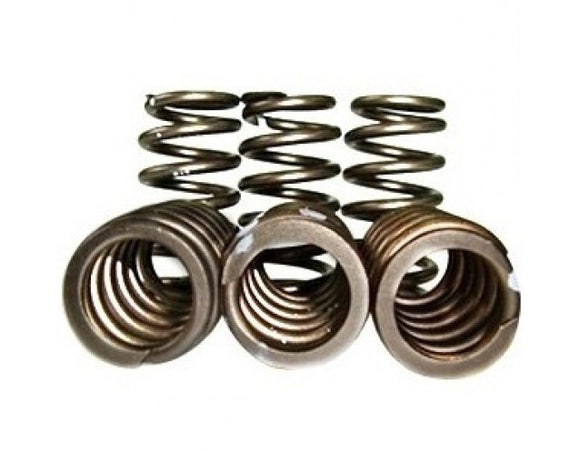 CSD DT360/DT466 Performance Valve Springs