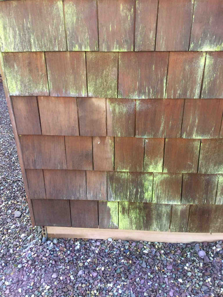Benz Biocidal Wash remove green algae from cedar tiles - shingles