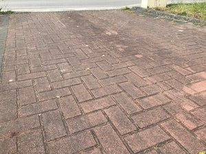 Block drive before softwash treatment with Benz Perma Cleanze.jpg