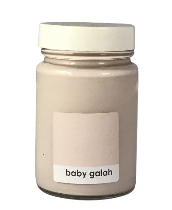 Chalk Effects 120ml Jar Baby Galah