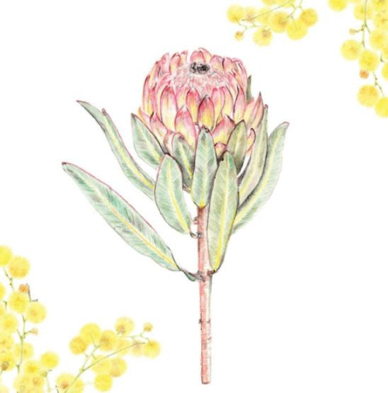 Greeting Card Protea Florals