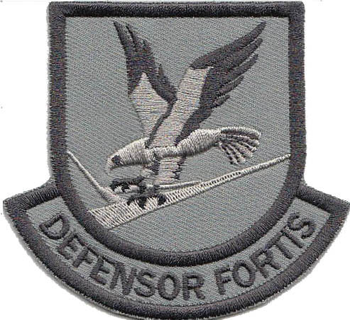 Large Custom Security Forces Defensor Fortis Patch - 2 Pack