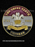 10th Royal Hussars Veterans Colours Lapel Pin