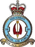 10 Sqn Royal Air Force Remembrance Flower Lapel Pin