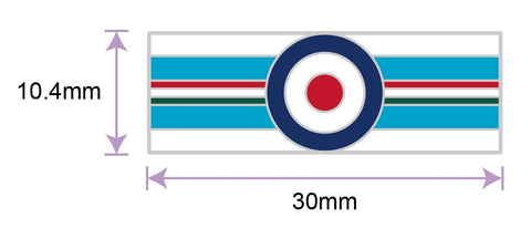 20 (R) Sqn Royal Air Force Roundel Colours Lapel Pin