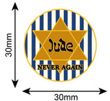 Jude Star Of David Never Again Colours Lapel Pin