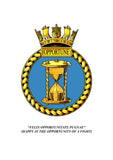 HMS Opportune Royal Navy Remembrance Flower Lapel Pin
