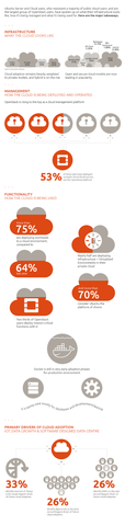 Ubuntu Cloud Survey Infographic
