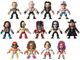 "WWE Wave 1 - 3.25"" Vinyl Figures Case of 12"