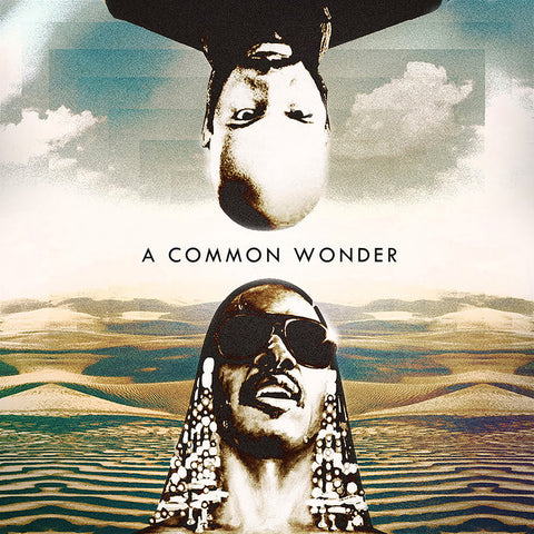 Amerigo Gazaway - A Common Wonder w/ Common & Stevie Wonder 2 LPs