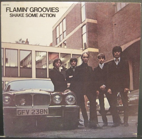 Flamin' Groovies - Shake Some Action