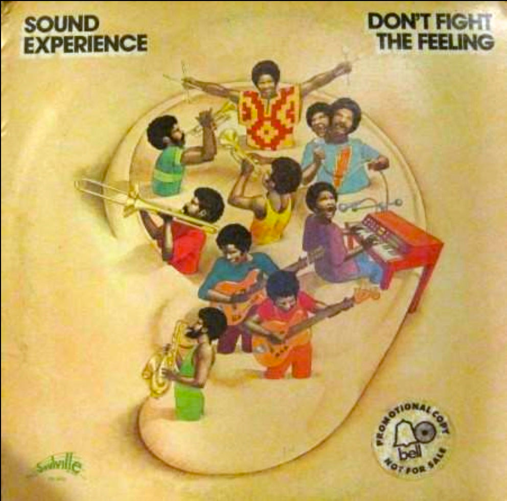 Sound Experience - Don't Fight the Feeling