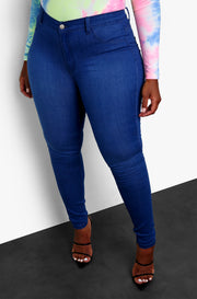 Dark Denim Mid Rise Skinny Jeans Plus Sizes