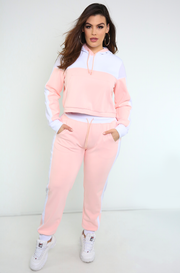 Pink Mesh Detailed Hooded Sweatshirt Plus Sizes