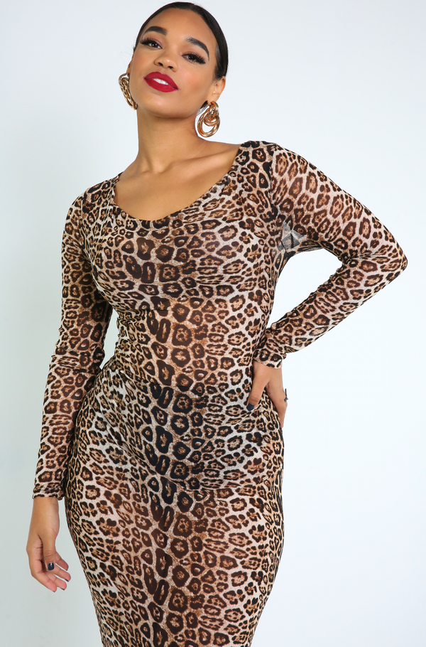 Brown Sheer Leopard Bodycon Midi Dress Plus Sizes