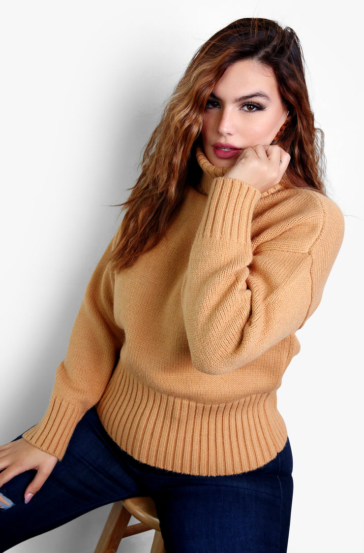 Camel Turtleneck Knitted Sweater Plus Sizes