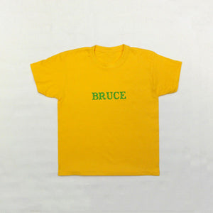 Windygoul Primary School - House T-Shirt Bruce