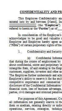 Employment Agreement and Non Disclosure (NDA)