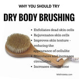 Dry Brush for Exfoliation, Circulation and Cellulite Aid / Dry Body Brushing