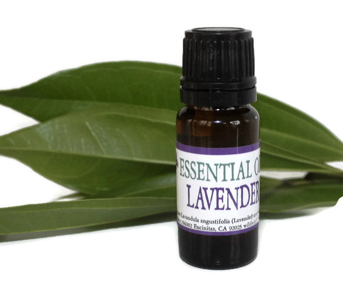 Lavender Essential Oil / Pure Essential Oil - Wild Violetta  - 1