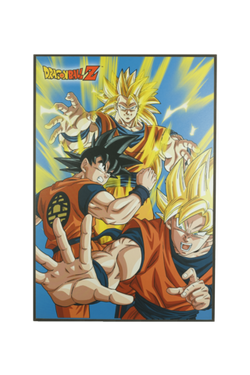 Dragon Ball Z Super Saiyan 3 Goku Tin Wall Sign