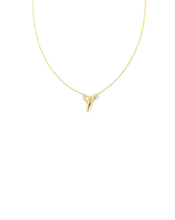 14K Gold Shark Tooth Jewelry