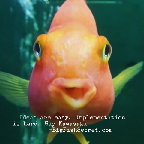 Ideas are easy, implementation hard - BigFishSecret.com