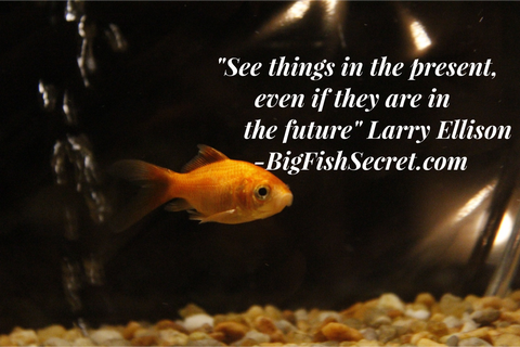 bigfishsecret.com - See things in the present even if they are in the future