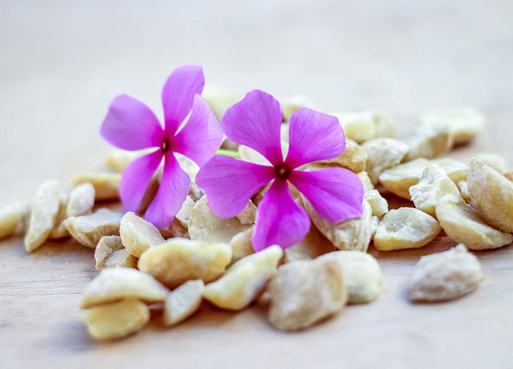 Kukui Nut Oil Benefits