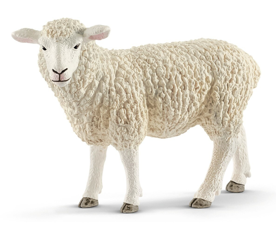 Schleich - Sheep