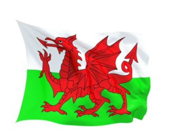 FLAG WALES INDOOR WALL 5x3