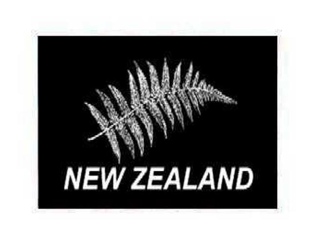 FLAG NZ FERN INDOOR WALL 5x3