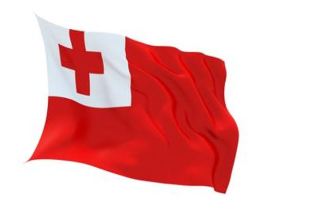 FLAG TONGA INDOOR WALL 5x3INCH