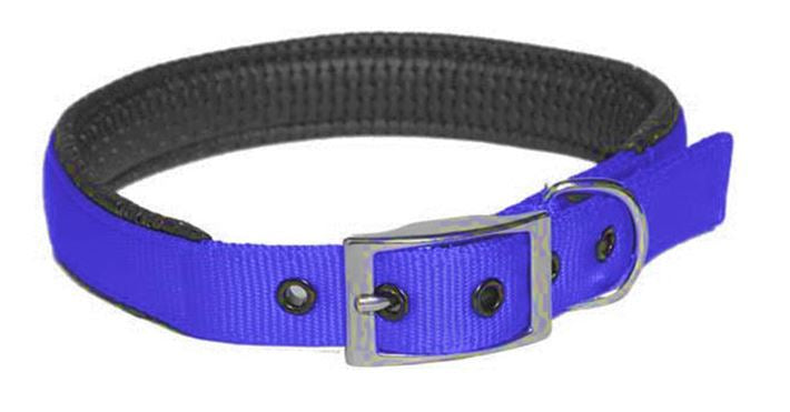 Collar Nylon Padded 25mm X 570mm Blue