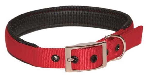 Collar Nylon Padded 19mm X 485mm Red