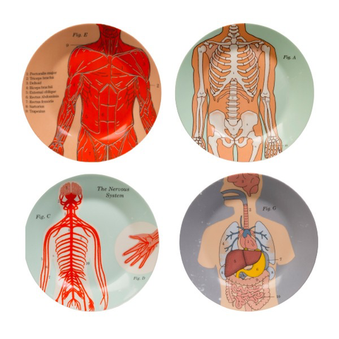 Anatomical Side Plates | Set of 4