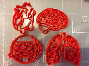 Human Tissue Anatomy Cookie Cutter (Set of 4) - Arbi Design - CookieCutz - 3
