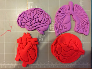 Human Tissue Anatomy Cookie Cutter (Set of 4) - Arbi Design - CookieCutz - 2
