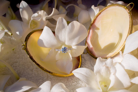 """The Paradise Proposal"" Engagement Package , Event Packages - Hawaii Weddings, Married with Aloha, Hawaii - 21"