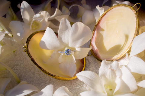 """The Picnic Proposal"" Engagement Package , Event Packages - Hawaii Weddings, Married with Aloha, Hawaii - 20"