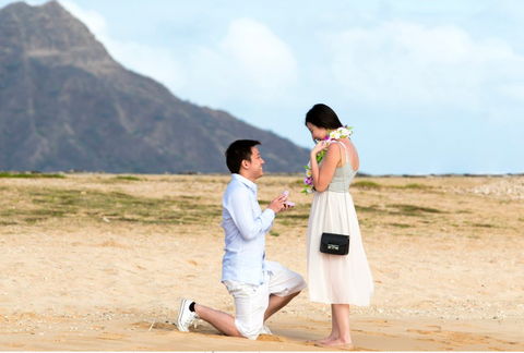 """The Picnic Proposal"" Engagement Package"